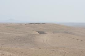 Tracks across the landscape