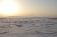 Apache's First Snow Jan 2012 (86)