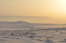 Apache's First Snow Jan 2012 (90)