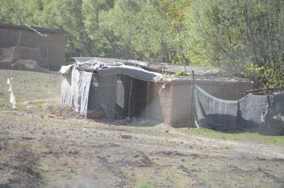 A house near the COP