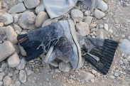 discarded boots...