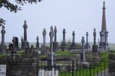 Ireland 10-17 Sep 11 236