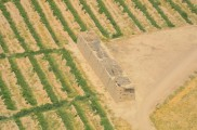 Grape drying hut in the grape orchard