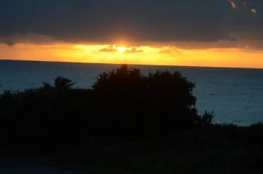Hawaii thru 9 Feb 11 001