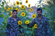 Apache & Al Masaak through 14 Aug 12 053