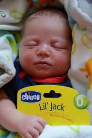 Introducing Jack